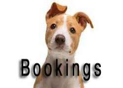 Bookings Page Bear Lake Kountry Kennels